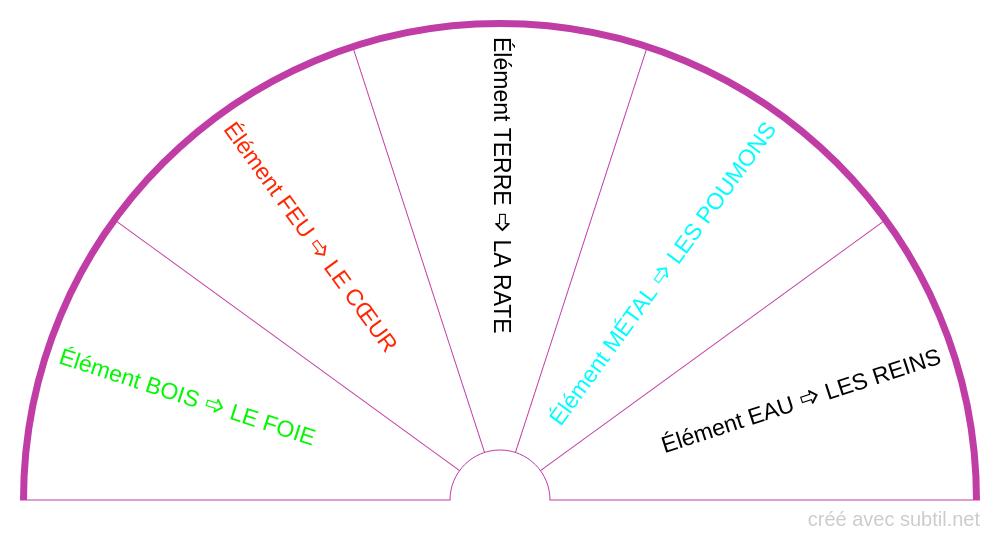 MTC - les 5 éléments du bien-être