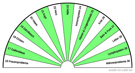 2  Sanjeevini  Körper BPS  16 - 30