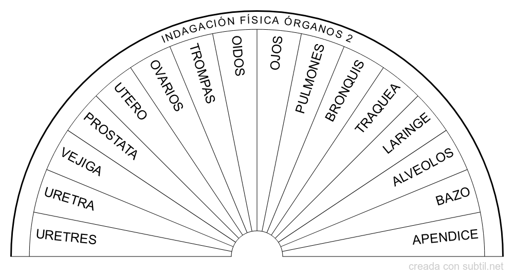 Grafico indagacion fisica organos 2