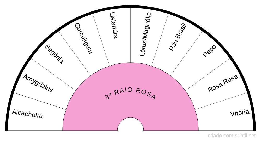 3º RAIO | ROSA