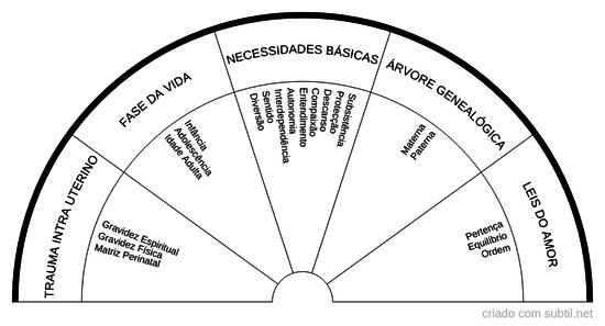 Trauma Intra Uterino + Programa de Necessidades Básicas + Desequilibrio Sistémico
