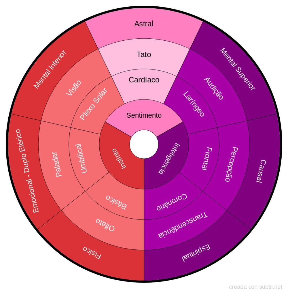 Corpos - Anatomia energética