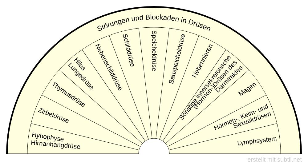 Störungen und Blockaden in Drüsen