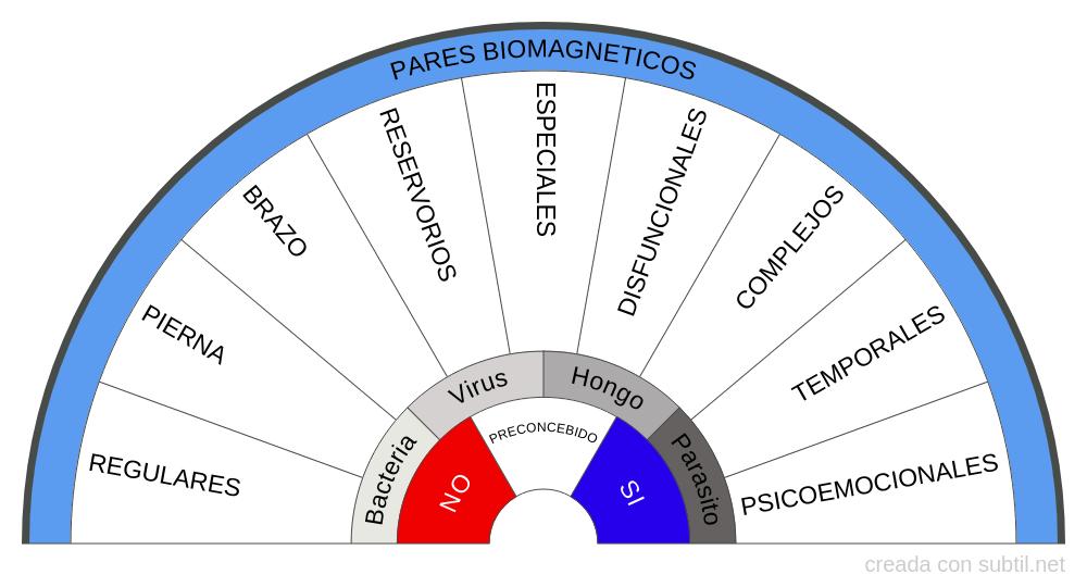 Pares biomagneticos