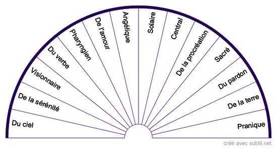 Les systèmes #7 - Les plexus