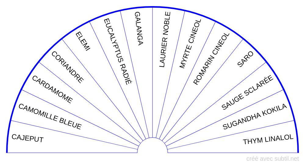 Huiles essentielles - 5ème Chakra