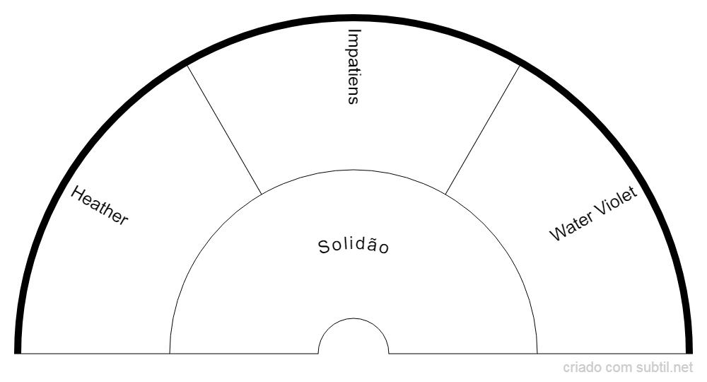 Grupo Bach - Solidão