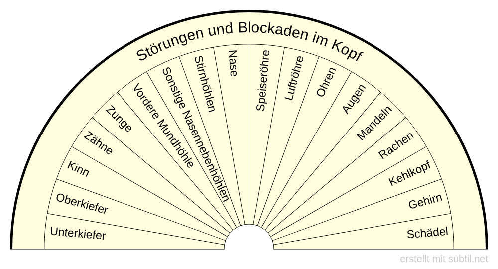 Störungen und Blockaden im Kopf