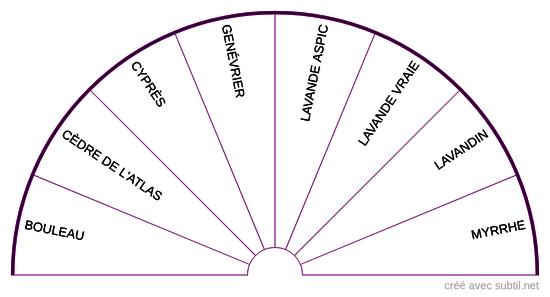 Huiles essentielles - 7ème Chakra
