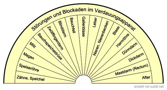 Störungen und Blockaden im Verdauungsapparat