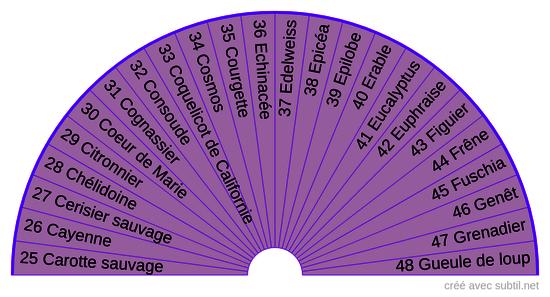 Élixirs floraux contemporains Deva 2
