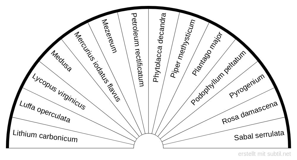 Symbolapotheke Homöopathie Seite 4