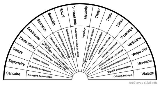 Phytothérapie S à V
