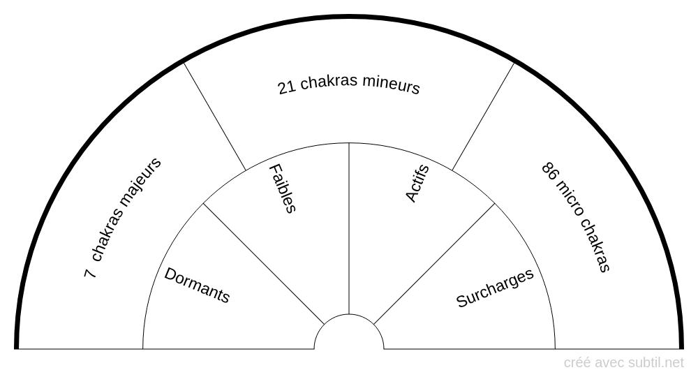 Activité des 114 chakras