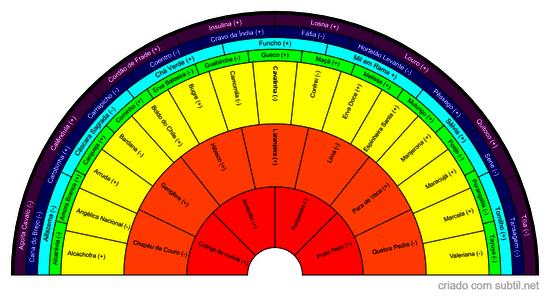 Fitoenergética - vegetais puros