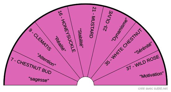 Fleurs de Bach - Manque d'Intérêt