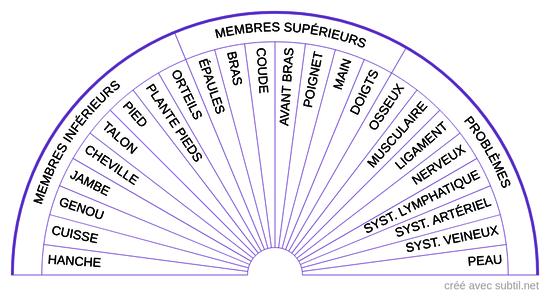 Soin 1 - Membres