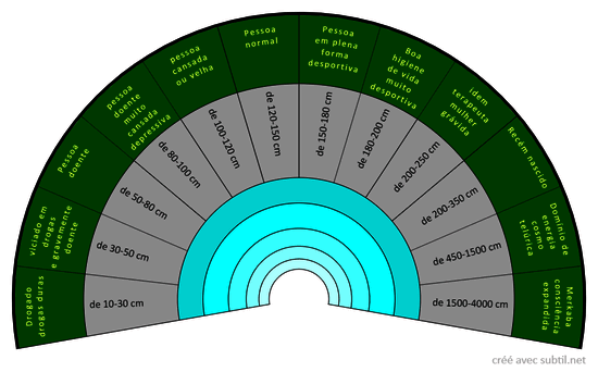 Dimensão do biocampo