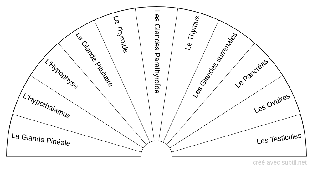 Le système endocrinien / thyroïde