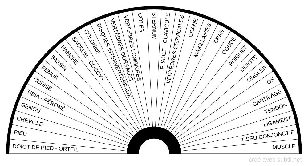 BIOMÈTRE ARTICULATIONS - ZONES