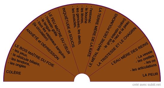 MTC - Les organes gérés par chaque élément