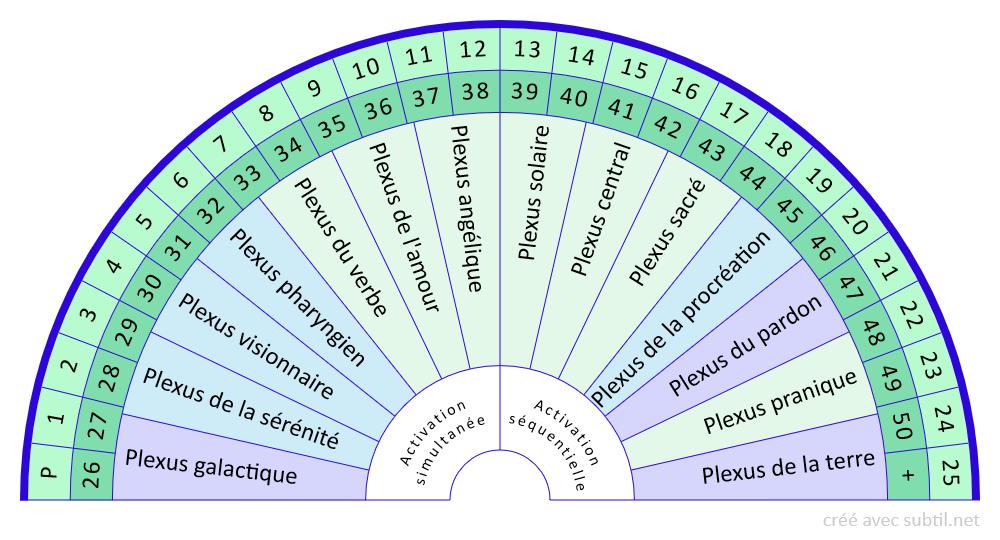 Plexus - pour activations combinées