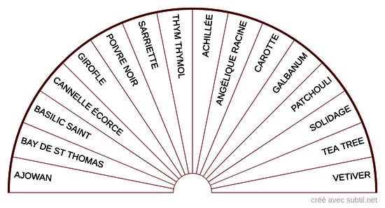 Huiles essentielles - 1er Chakra