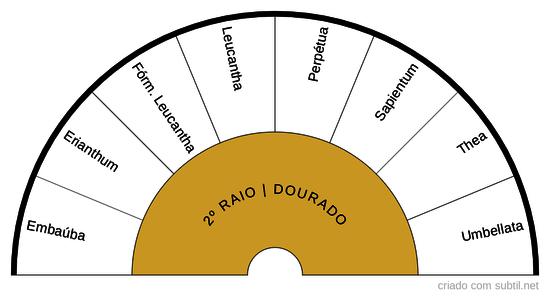 2º RAIO DOURADO