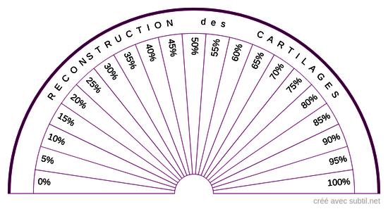 Reconstruction des cartilages