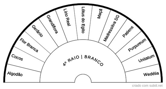 4º RAIO BRANCO