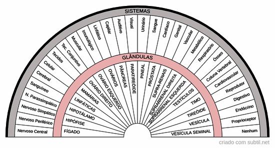 Sistemas e Glândulas do corpo