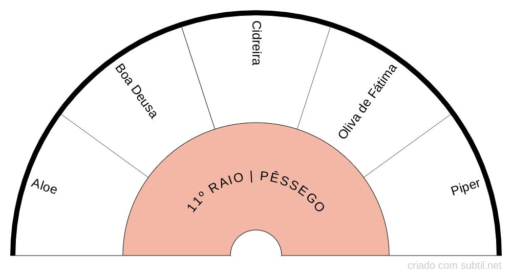 11º RAIO PÊSSEGO