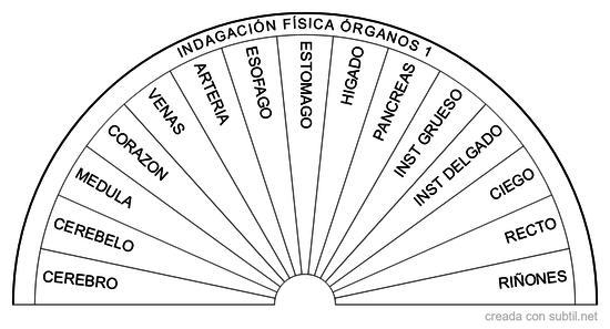 Grafico indagación física órganos 1