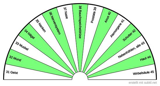 3  Sanjeevini  Körper  BPS  31 - 45