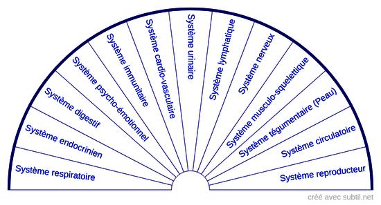 Systèmes corporels